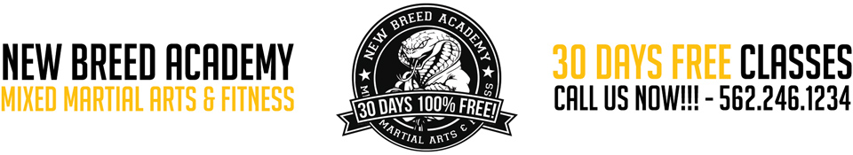 New Breed Mixed Martial Arts & Fitness in Santa Fe Springs, CA